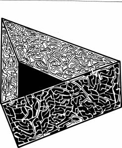 maze 159