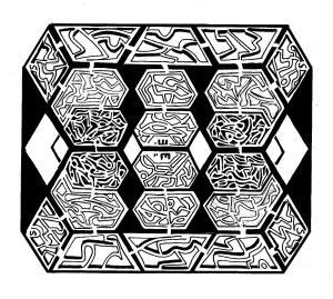 maze 315 001